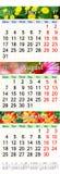 Kalender für Juli August October 2017 mit drei färbte Bilder Stockbilder