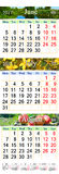 Kalender für Juni Juli und August 2017 mit farbigen Bildern Stockfoto