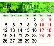 Kalender für Juni 2017 mit Bild der Blätter des Ahorns Lizenzfreie Stockfotos