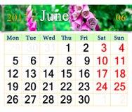 Kalender für Juni 2017 mit lila Glockenblumen Stockfotografie