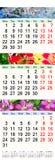Kalender für Mai Juni im Juli 2017 mit Bildern Stockfotografie