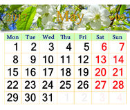 Kalender für Mai 2017 mit blühendem Kirschbaum Lizenzfreies Stockfoto