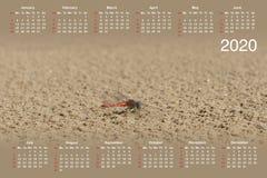 Kalender für 2020 stock abbildung