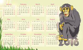 Kalender 2016-jährig vom Affen Lizenzfreies Stockfoto