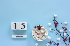 Kalender Januari 15 Kop cacao, heemst en takbessen stock foto's