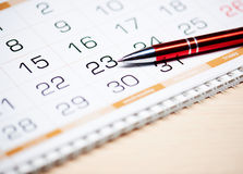 Kalender und Feder Stockbild
