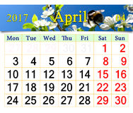 Kalender voor April 2017 met bij op de bloem van pruim Royalty-vrije Stock Fotografie