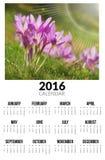 Kalender voor 2016 De bloemen van de herfst Vector vakantiekaart Royalty-vrije Stock Foto's