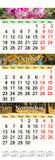 Kalender voor herfstmaanden 2017 Royalty-vrije Stock Foto's