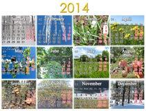 Kalender voor het jaar van 2014 Royalty-vrije Stock Foto's