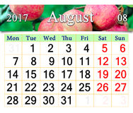Kalender voor het jaar van Augustus 2017 met appelen Stock Afbeelding