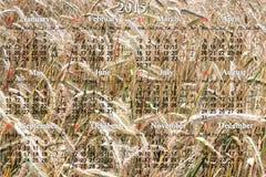 Kalender voor het jaar van 2015 op het gebied van tarwe Royalty-vrije Stock Foto's