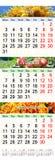 Kalender voor Juli August September 2017 met drie gekleurde beelden Stock Foto's