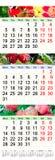 Kalender voor Juni Juli en Augustus 2017 met gekleurde beelden Stock Foto