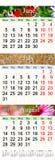 Kalender voor Juni Juli en Augustus 2017 met gekleurde beelden Royalty-vrije Stock Foto