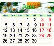 Kalender voor Juni 2017 met beeld van camomiles en onzelieveheersbeestjes Stock Afbeeldingen