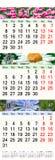 Kalender voor Mei Juni Juli 2017 met beelden Stock Foto