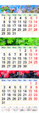 Kalender voor Mei Juni Juli 2017 met beelden Royalty-vrije Stock Foto