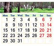 Kalender voor Mei 2017 met de lentebosje Royalty-vrije Stock Fotografie