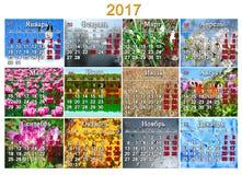 Kalender voor 2017 in Rus met foto twaalf van aard Royalty-vrije Stock Afbeeldingen