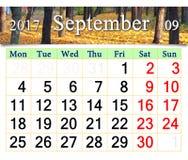 Kalender voor September 2017 met gele bladeren Stock Fotografie