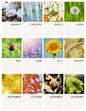 Kalendermalplaatje Royalty-vrije Stock Foto