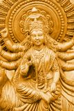 Kali d'or Photographie stock libre de droits