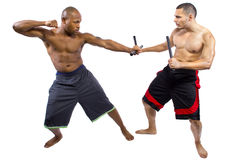 Kali Escrima Arnis Martial Artists royalty-vrije stock foto