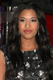 Kali Hawk Stock Image