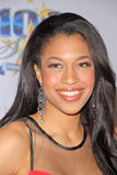 Kali Hawk Royalty Free Stock Photo