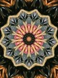 Kaliedoscope Royalty Free Stock Image