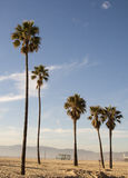 Kalifornia lato - Snata Monica plaża Obrazy Royalty Free