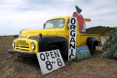 Kalifornia: organicznie truskawki gospodarstwa rolnego stojaka ciężarówki znak Obraz Royalty Free