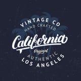 Kalifornia ręka pisać literowanie z palmy tłem Obraz Stock