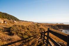 Kalifornia wybrzeże Zdjęcia Royalty Free
