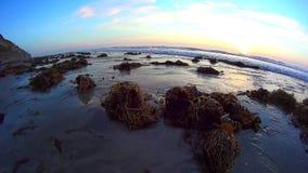 Kalifornia zmierzchu oceanu blasku księżyca plaży oceanu poziom 2 zbiory wideo