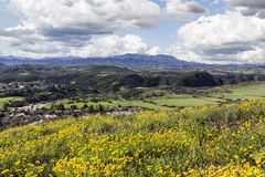 Kalifornien ängar arkivfoto