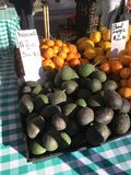 Kalifornien-Avocados Lizenzfreie Stockbilder