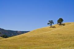 Kalifornien back Arkivfoto