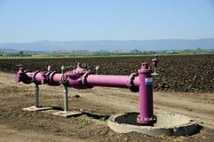 Kalifornien-Bauernhofbewässerung Stockbild