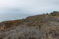 Kalifornien centralkust Royaltyfri Fotografi