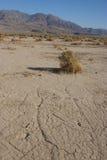 Kalifornien Death Valley nationalpark, gyttjadyn Royaltyfria Bilder