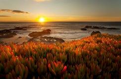 Kalifornien dramatisk solnedgång Royaltyfri Fotografi