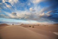 Kalifornien dynsand fotografering för bildbyråer