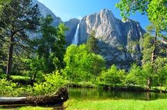 Kalifornien faller np-upperen yosemite Arkivfoton