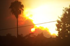 Kalifornien-Feuer stockfotografie