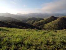 Kalifornien fjäder Arkivfoton