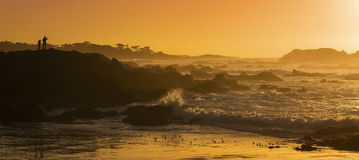 Kalifornien-Gold Lizenzfreies Stockfoto