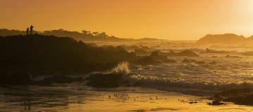 Kalifornien guld Royaltyfri Foto