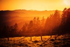 Kalifornien-Hügel-Sonnenuntergang Stockfotos